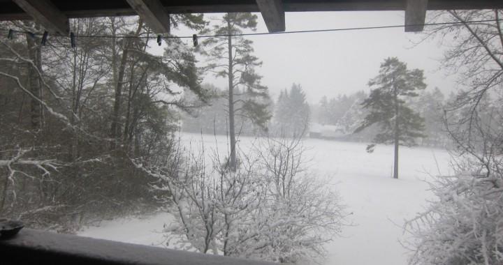 randelab_winter-staayle